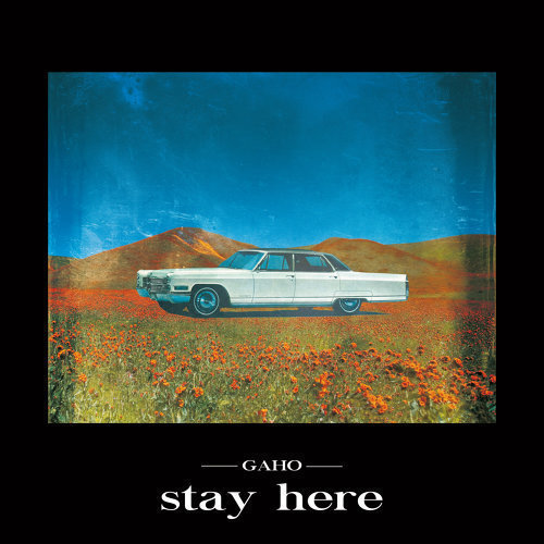 Stay_here